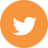 twitter-footer-icon.png